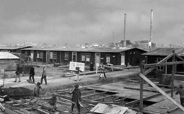 Notwohnungen werden am Ortsrand errichtet