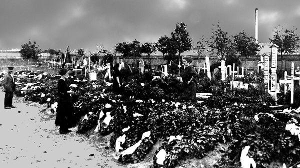 Friedhof Oppau
