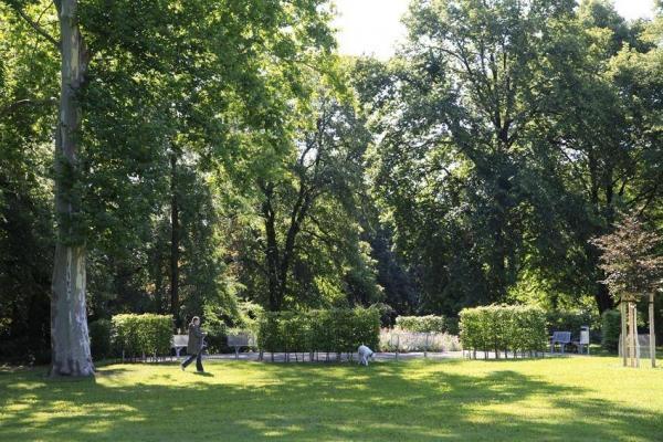 Oppau 22.7.2012 Spaziergang mit Hund am ehem. Springbrunnen.
