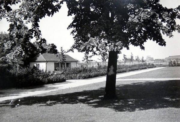 Oppauer Park