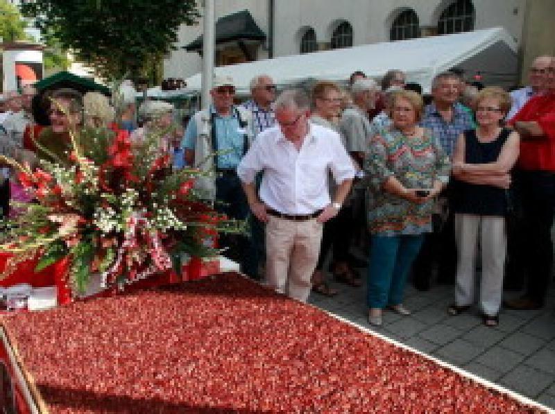Quetschekerwe Eröffnung 2015 - Archivbild Oppau.Info
