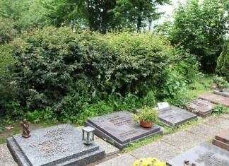 Gräber werden von Hecken überwachsen.