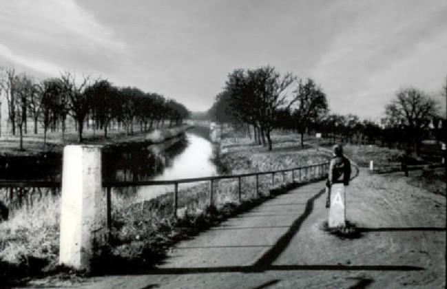 """Leinpfad vom """"Öffler"""" zur """"Schwarzen Brücke"""""""