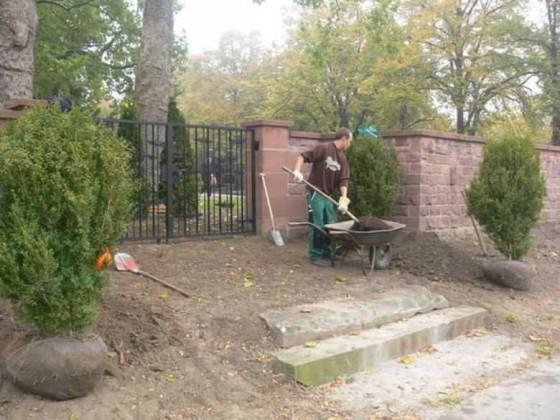 Edigheim 13.10.2008 Friedhofsmauer bepflanzen.