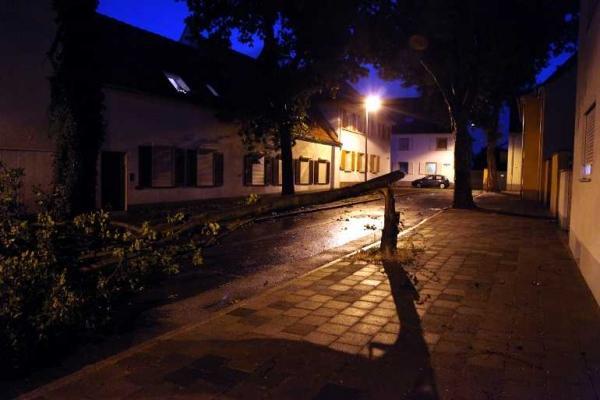 Auch in der Parsevalstrasse in Oppau hat die Naturgewalt ganze Arbeit geleistet. Hier blockierte ein umgeknickter Baum die gesamte Fahrbahnbreite