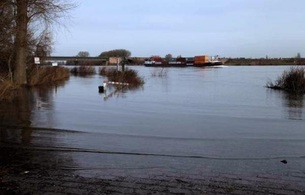 Winterhochwasser 2012 Oppau