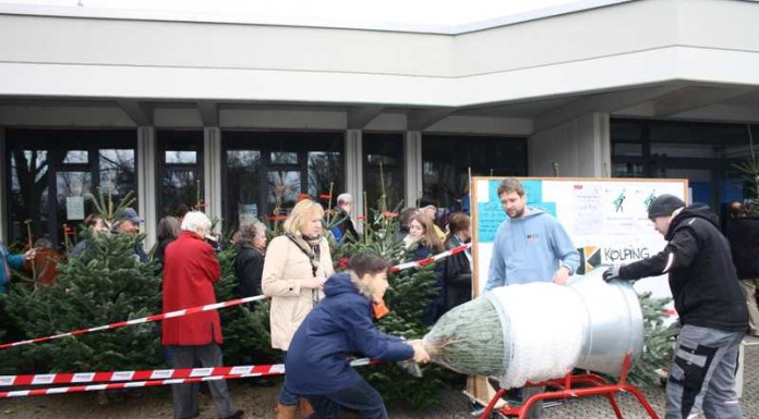 Tannenbaumverkauf bei der Kolpingjugend
