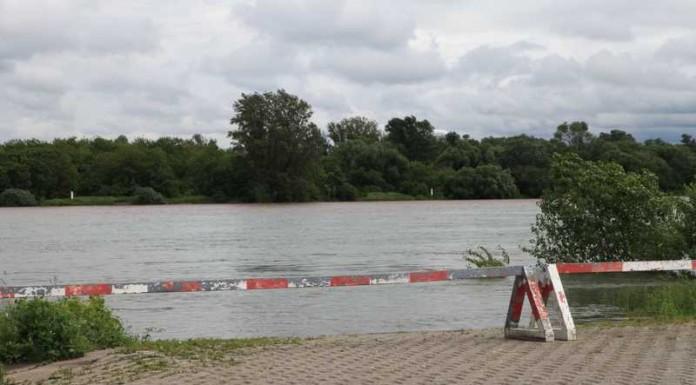 Rheinhochwasser 30.5.2016 Pegel 13:00 Uhr 5,36 Meter