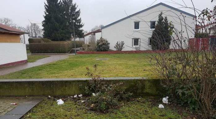 Müllablagerung am Entenweiher