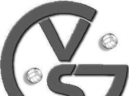 Logo VSG Edigheim