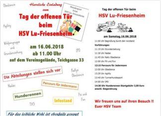 Plakat Tag der offenen Tür - HSV Friesenheim