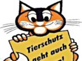 Tierschutzverein Ludwigshafen