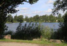 Großparthweiher im Sommer - Archivbild