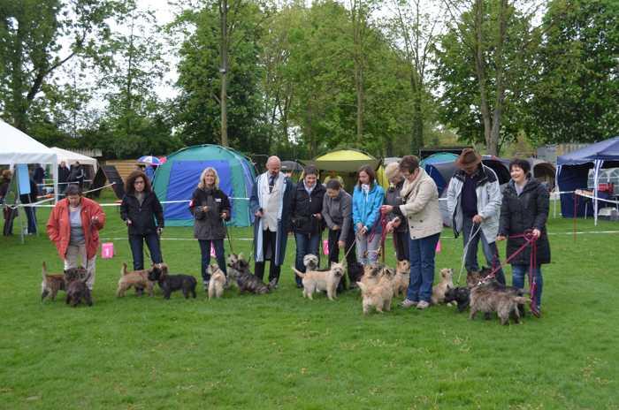 Gruppenbild mit Cairn Terrier - Quelle: KfT OG Mannheim-Ludwigshafen