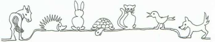 Tierhilfe Ludwigshafen e.V. Logo
