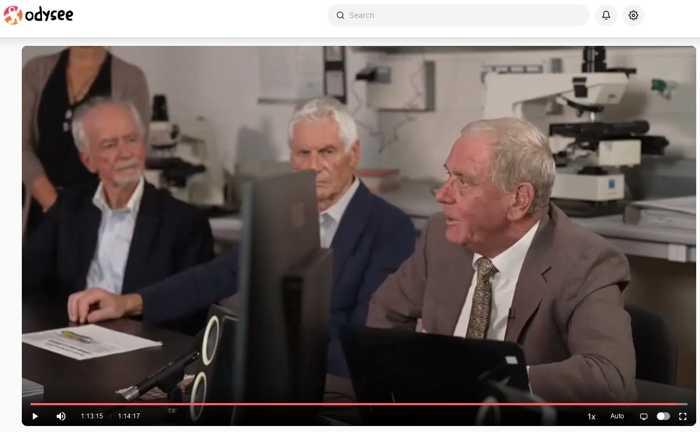 Bildschirmausschnitt Pressekonferenz
